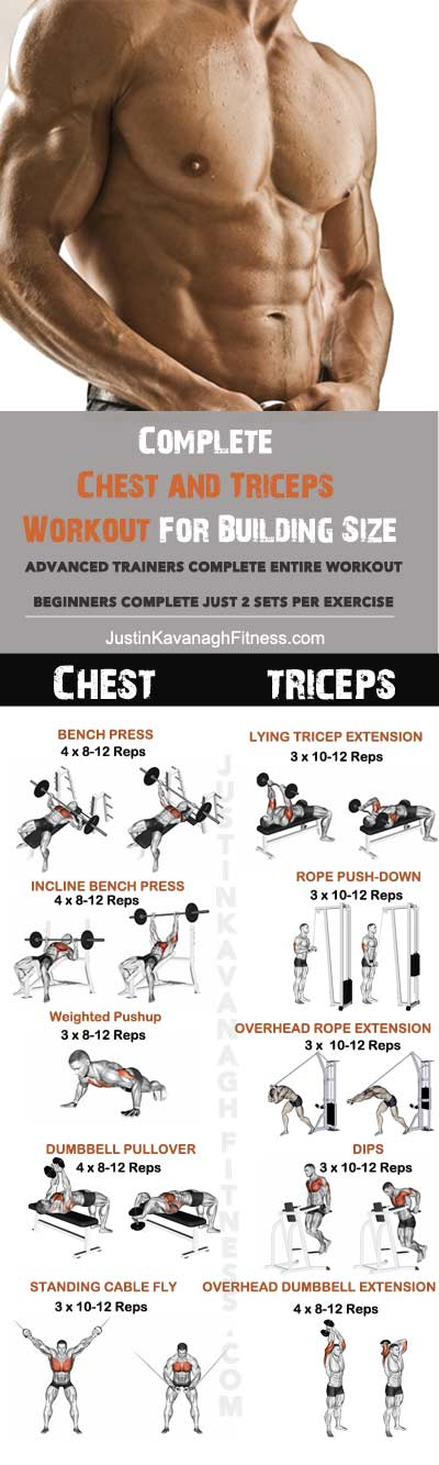 chest n triceps workout - 400×1333